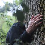 Broceliande_main_arbre-4.jpg