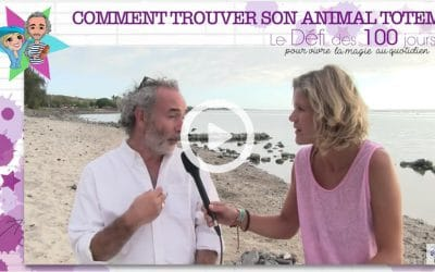 Comment trouver son animal totem ?