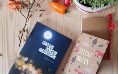 Blog Livres à lire – «Ce soir la lune était ronde»