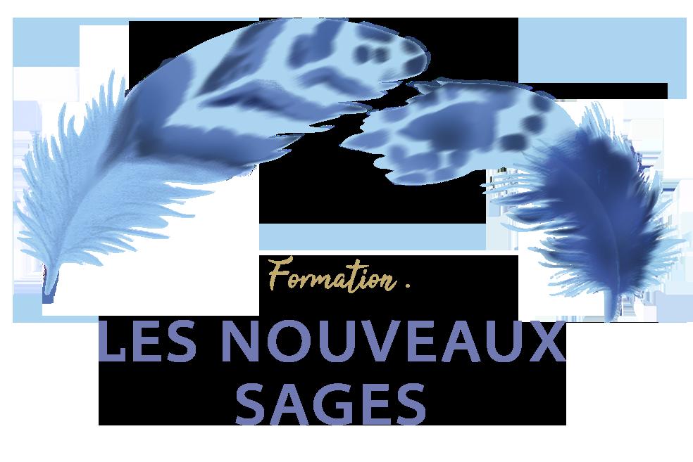 Logo Nouveau Sage
